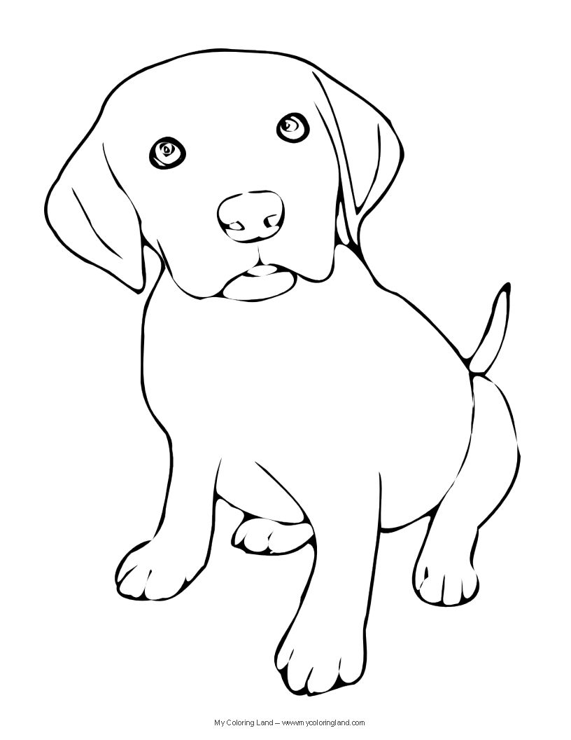 Lab Puppy Coloring Pages At GetDrawings