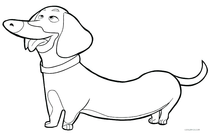 800x512 Yellow Lab Coloring Pages Yellow Lab Coloring Pages Black Lab