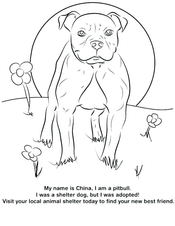 600x776 Free Dog Coloring Pages Realistic Dog Coloring Pages Realistic Dog