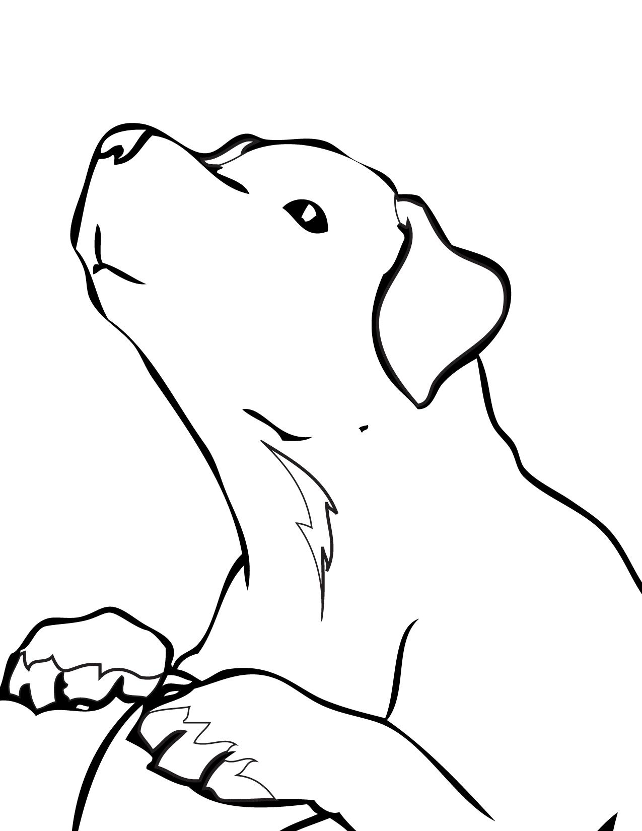 1275x1650 Labrador Retriever Coloring Page