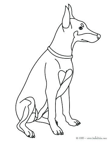 364x470 Labrador Retriever Coloring Pages Golden Retriever Coloring Pages