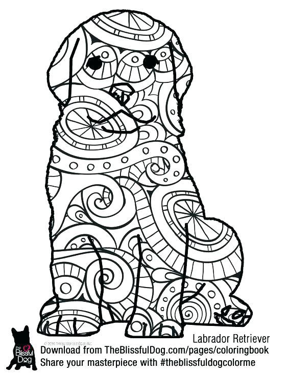 564x729 Labrador Retriever Coloring Pages Retriever Coloring Pages