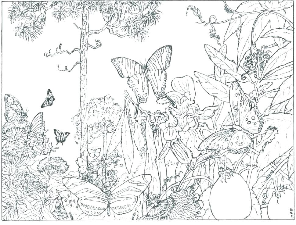970x738 Coloring Book Pages For Adults Lace Dream Catcher Coloring Page