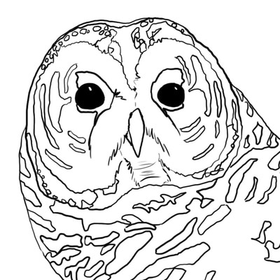 400x400 Coloring Pages