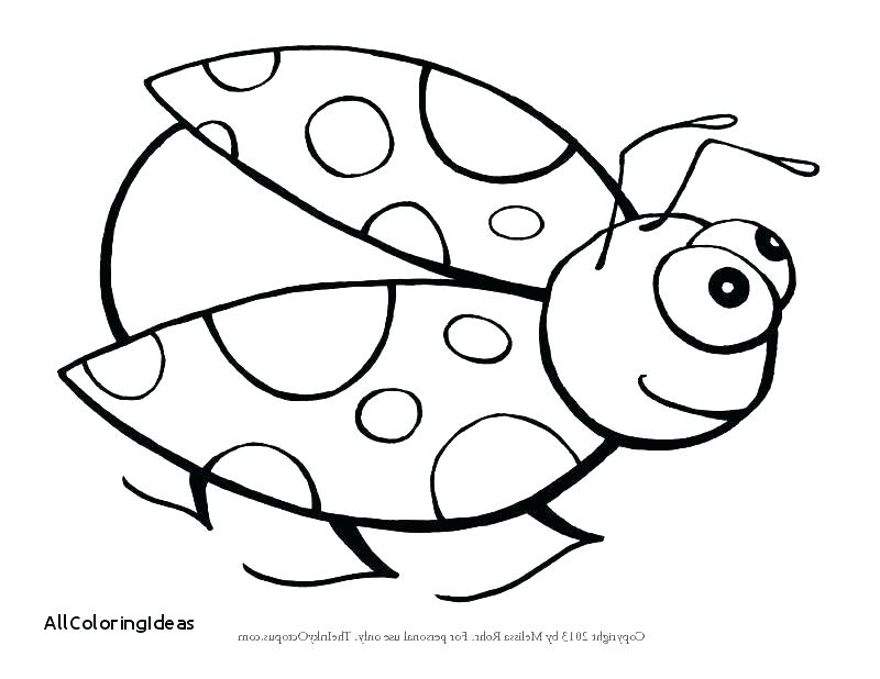 800x618 Cute Ladybug Coloring Pages Cute Ladybug Coloring Pages Lady Bug S
