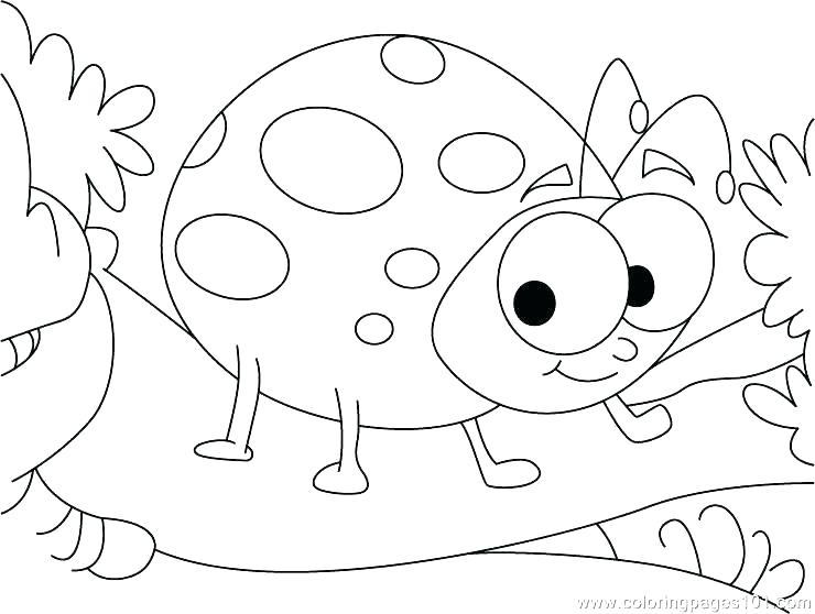 740x558 Lady Bug Coloring Sheet Ladybug Coloring Pages Ladybug Coloring