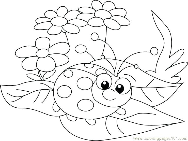 740x554 Ladybug Coloring Page For Kids Marvelous Ladybug Coloring Page