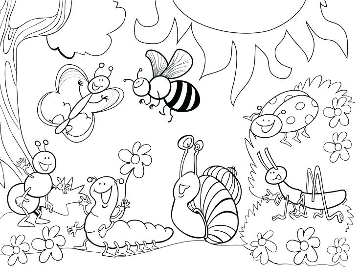 736x545 Bug Coloring Page Bugs Coloring Pages Bugs Coloring Page Simple