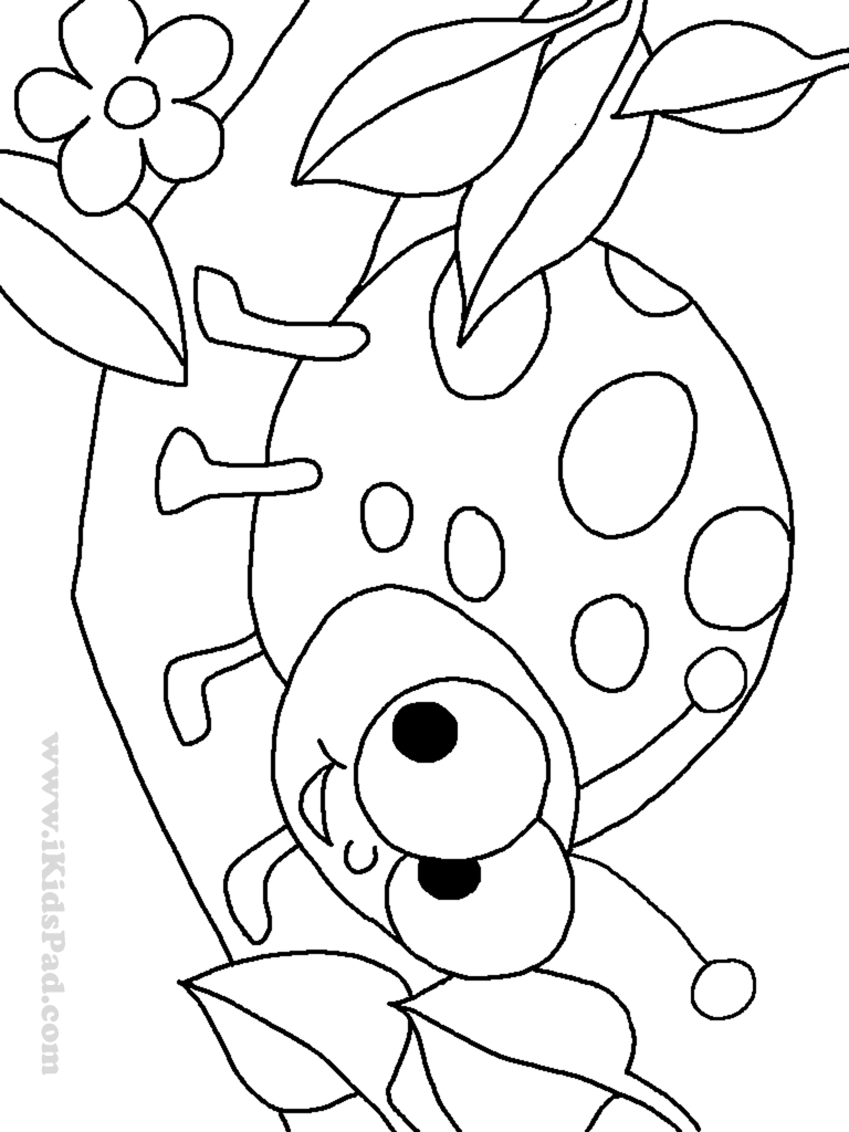 768x1024 Printable How To Draw Miraculous Ladybug Coloring Pages Cat Noir
