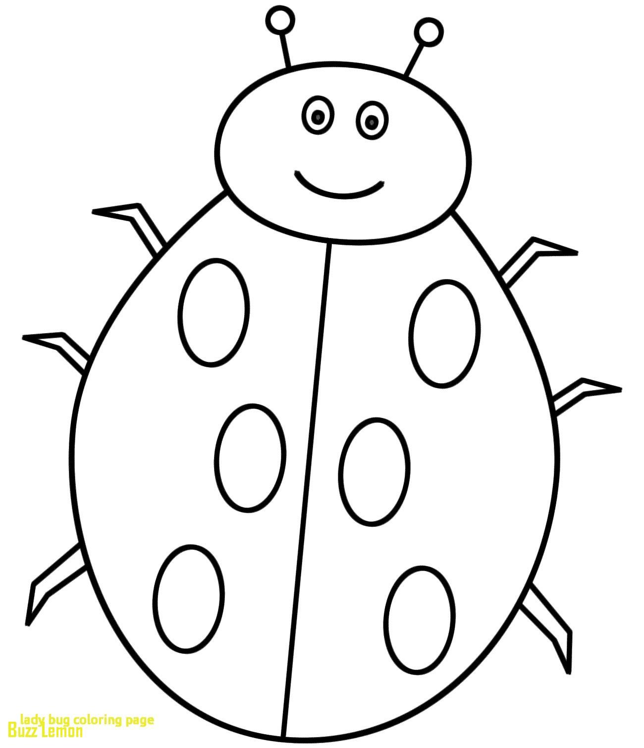 1300x1509 Coloring Page Ladybug Luxury Lady Bug Coloring Page With Ladybug