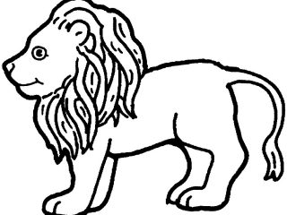 320x240 Land Animals Coloring Pages Land Animals To Color S Coloring Sheet