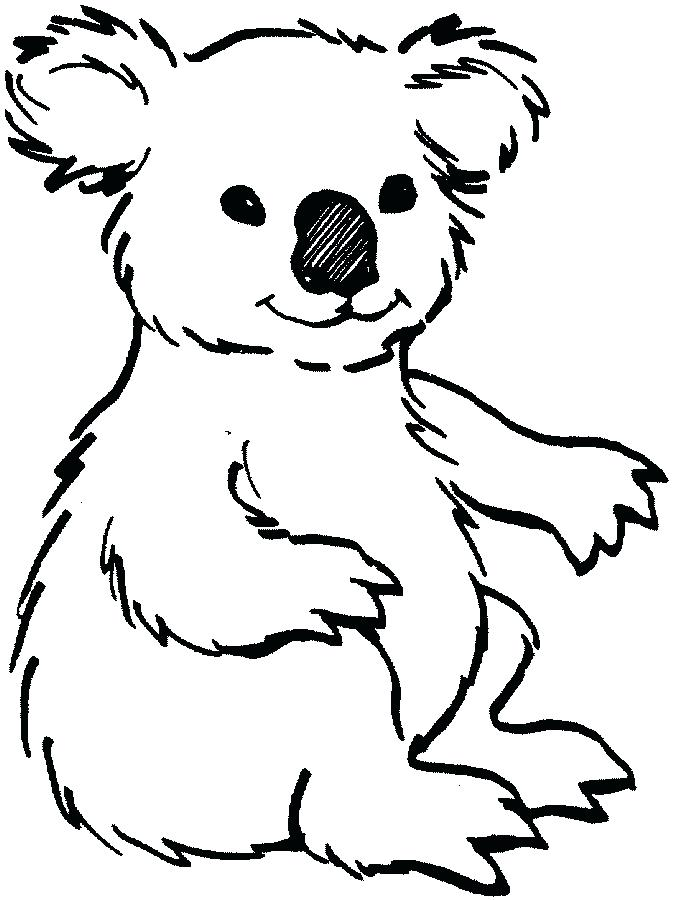 673x900 Land Animals Colouring Pages To Color Koala Fuhrer Von