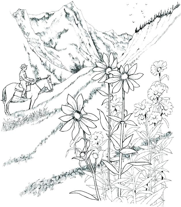 629x720 Scenery Coloring Pages Landscape Coloring Pages For Adults