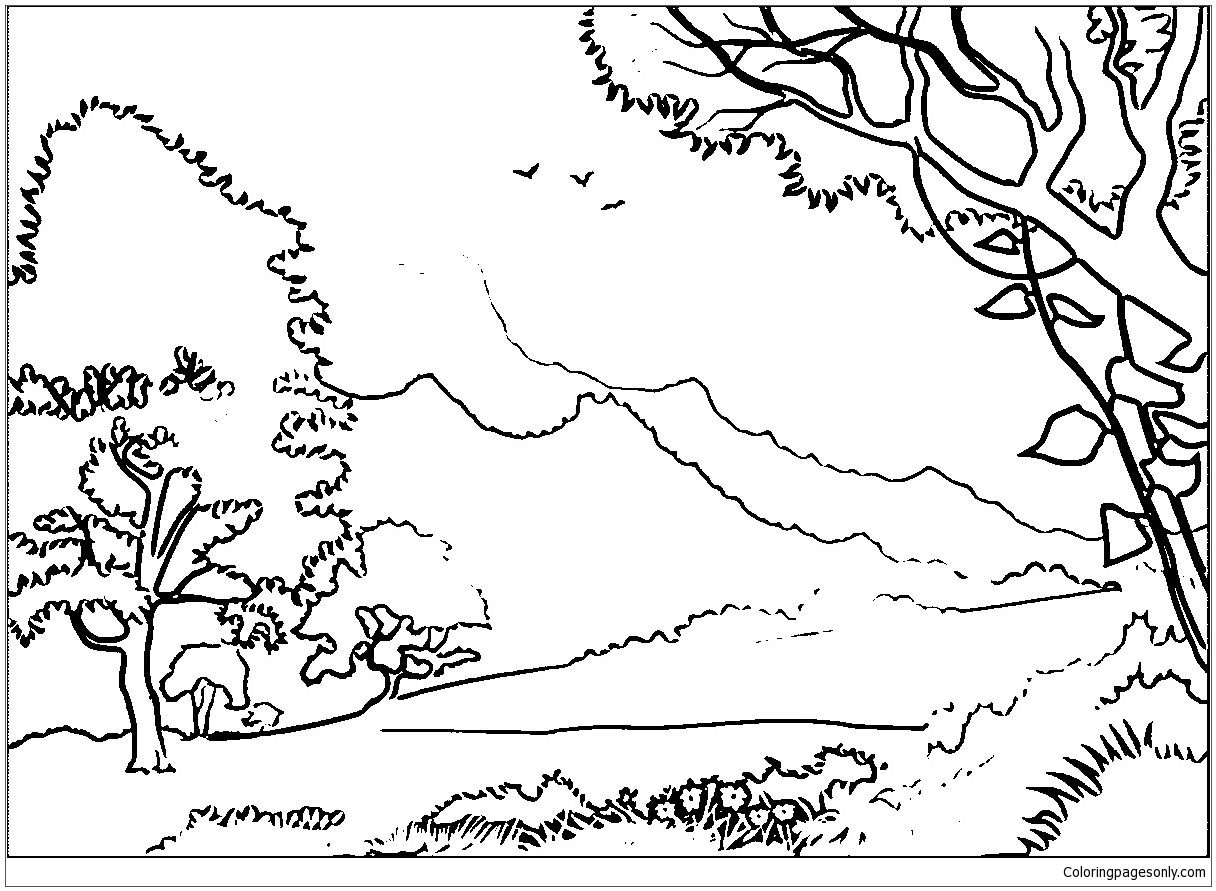 1216x891 Forest Landscape Coloring Page Free Pages Online Throughout