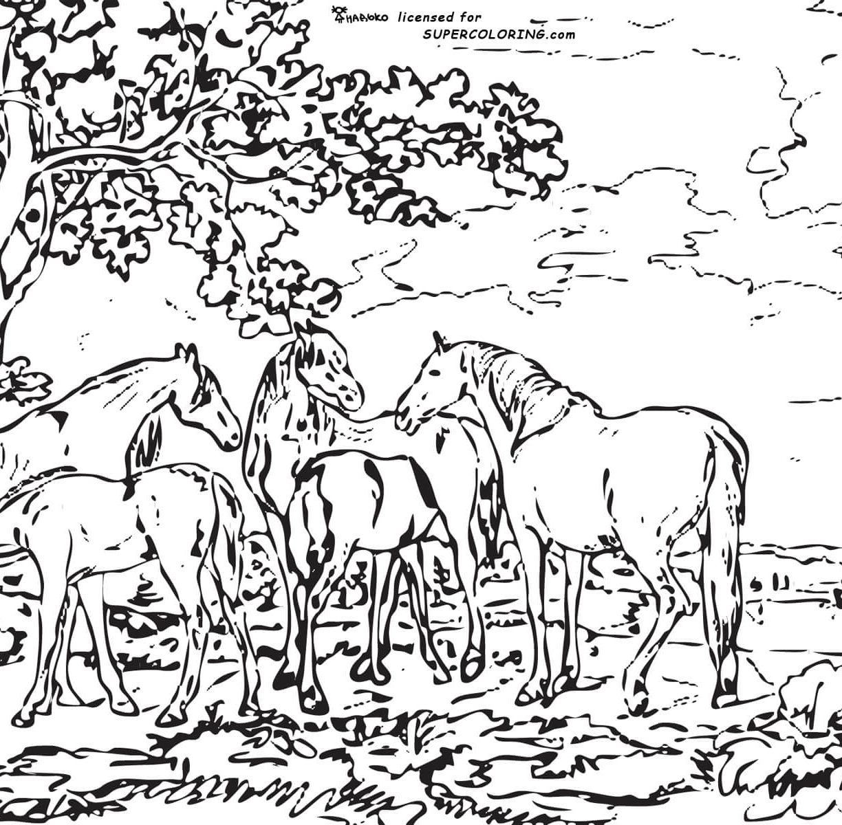1224x1200 Landscape Coloring Pages Beside Beach Beautiful For Toddler Adult