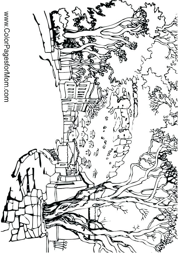 579x820 The Coolest Free Coloring Pages For Adults Color Pages For Adults