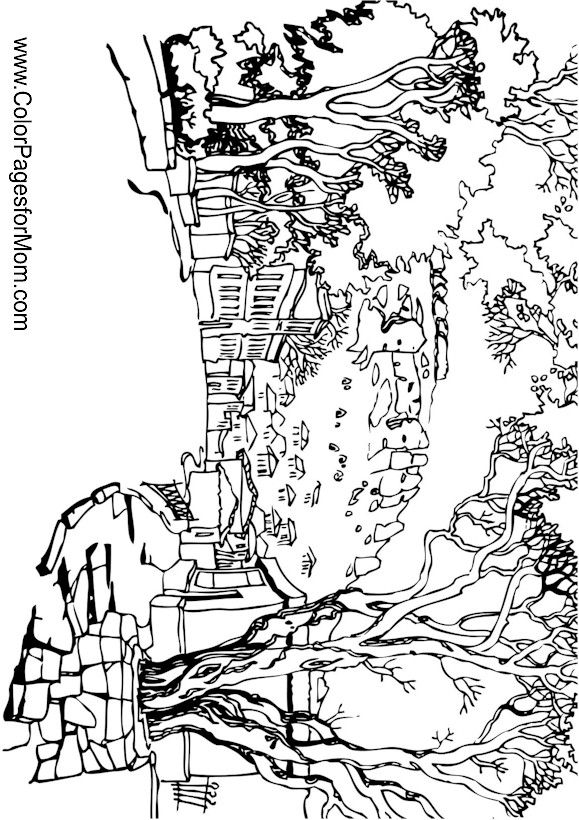 579x820 Landscape Adult Coloring Landscaping And Adult