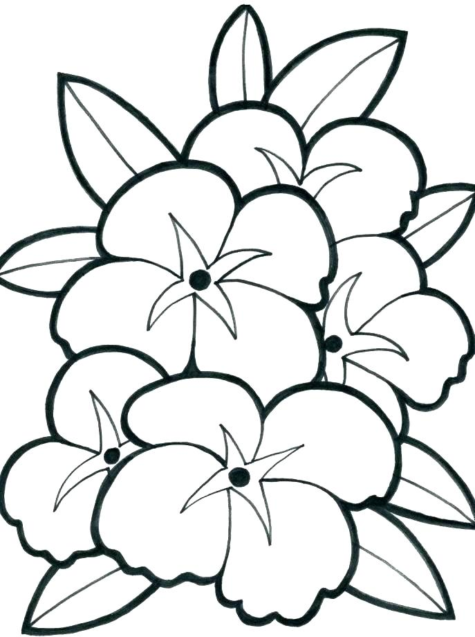 Large Coloring Pages To Print At GetDrawings Free Download