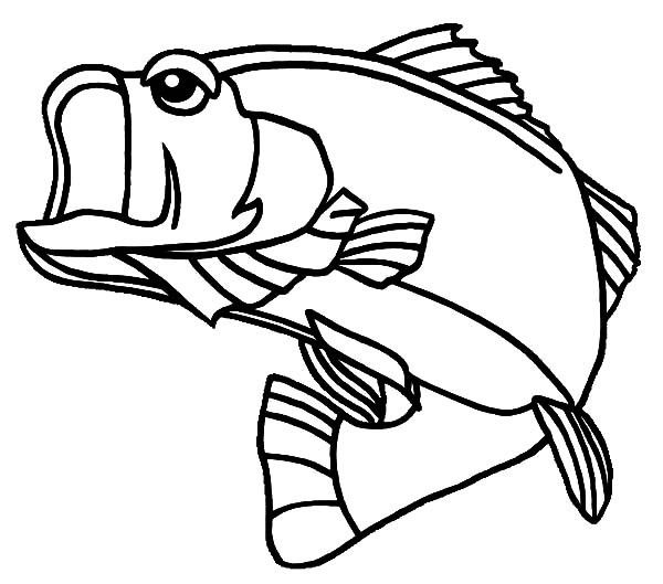 600x529 Bass Fish, Georgia Largemouth Bass Fish Coloring Pages Happy