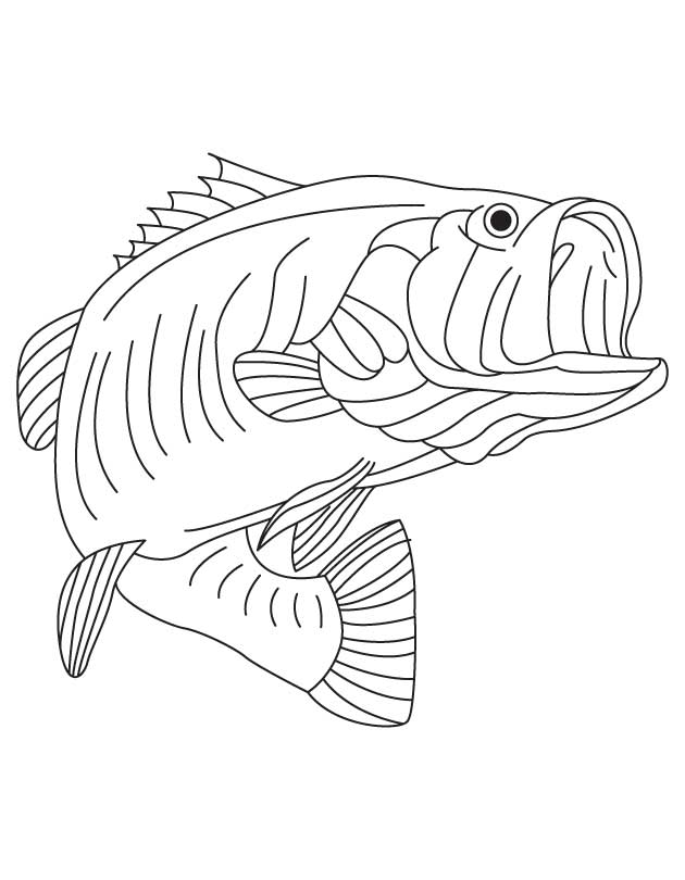 630x810 Largemouth Bass Coloring Page