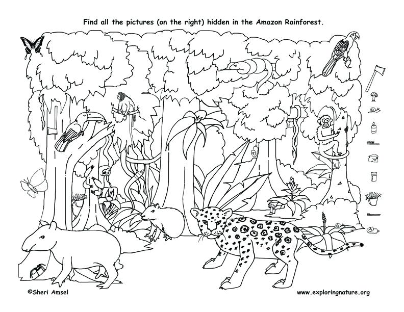 792x612 Plus Coloring Pages To Print Hidden Pictures Coloring Sheets Pages