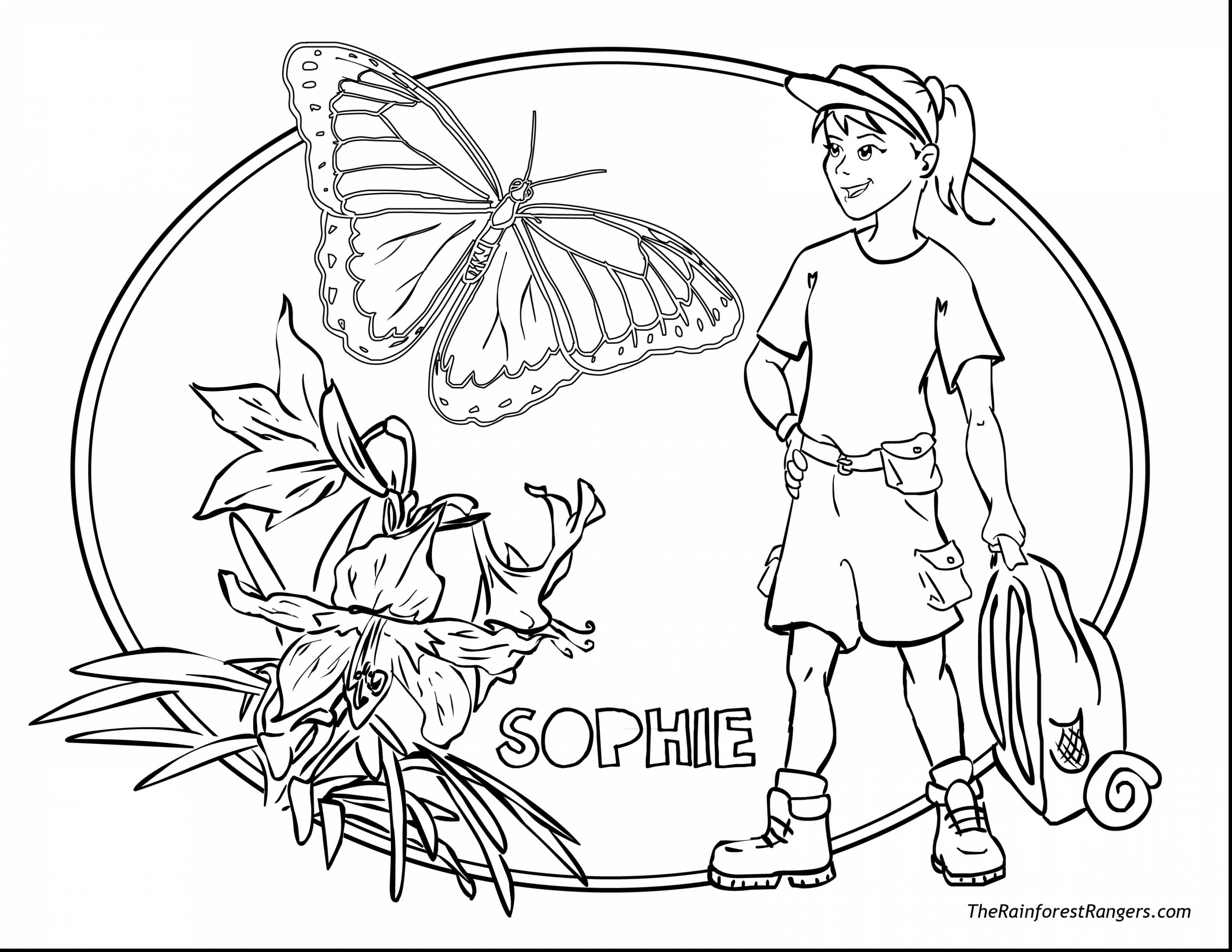 3630x2805 Rainforest Coloring Page