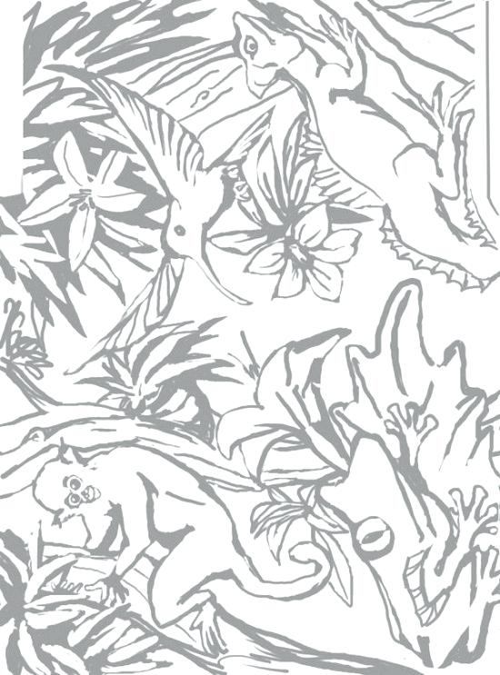 550x743 Rainforest Coloring Page Coloring Pages Coloring Pages With Ideas