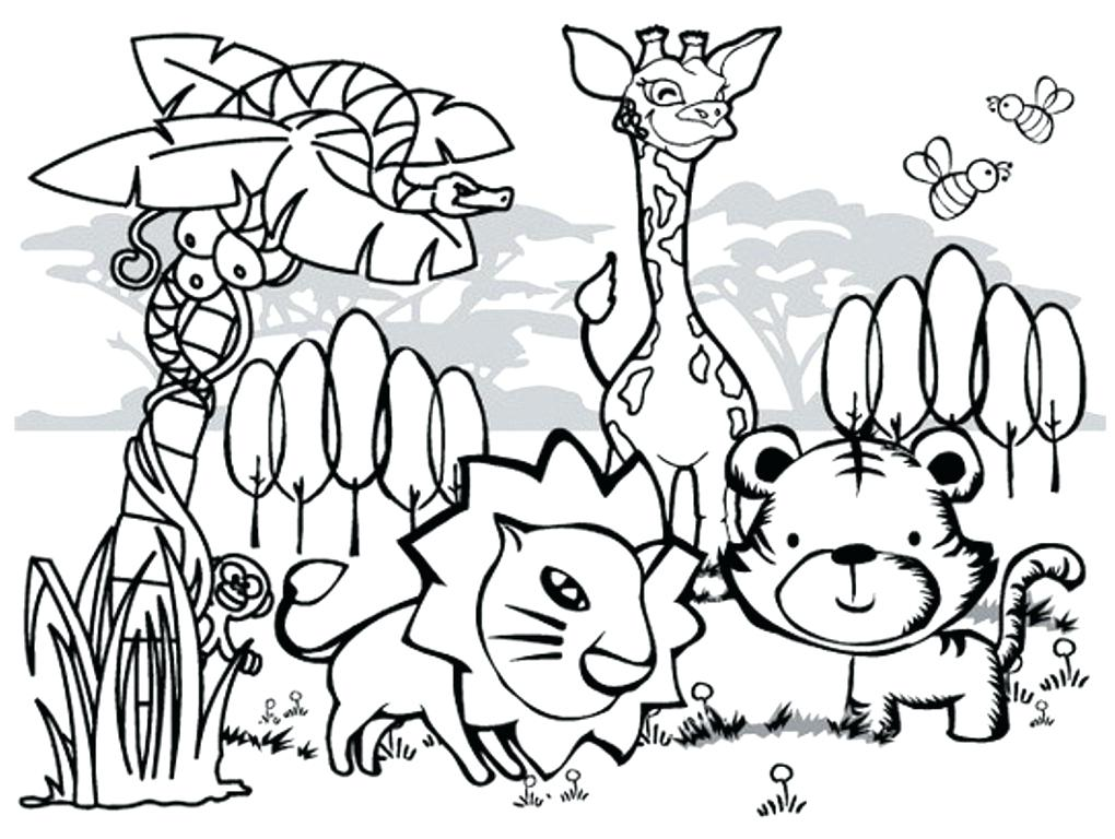 1020x768 Rainforest Coloring Page Coloring Pages For Kids Collection