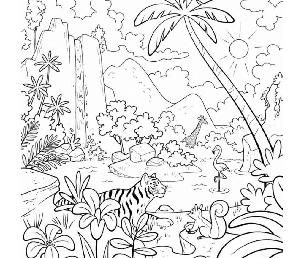1024x869 Unique Rainforest Layers Coloring Page Mold