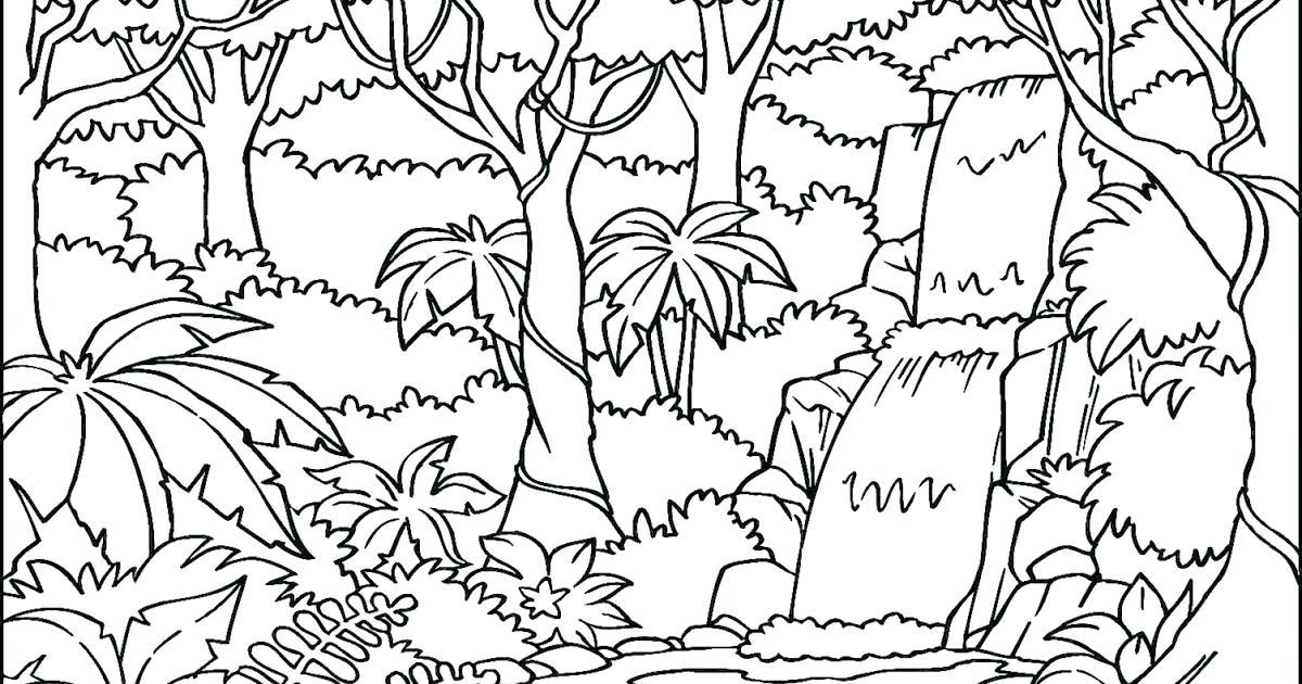 1200x630 Rainforest Coloring Page Grandmaman Site