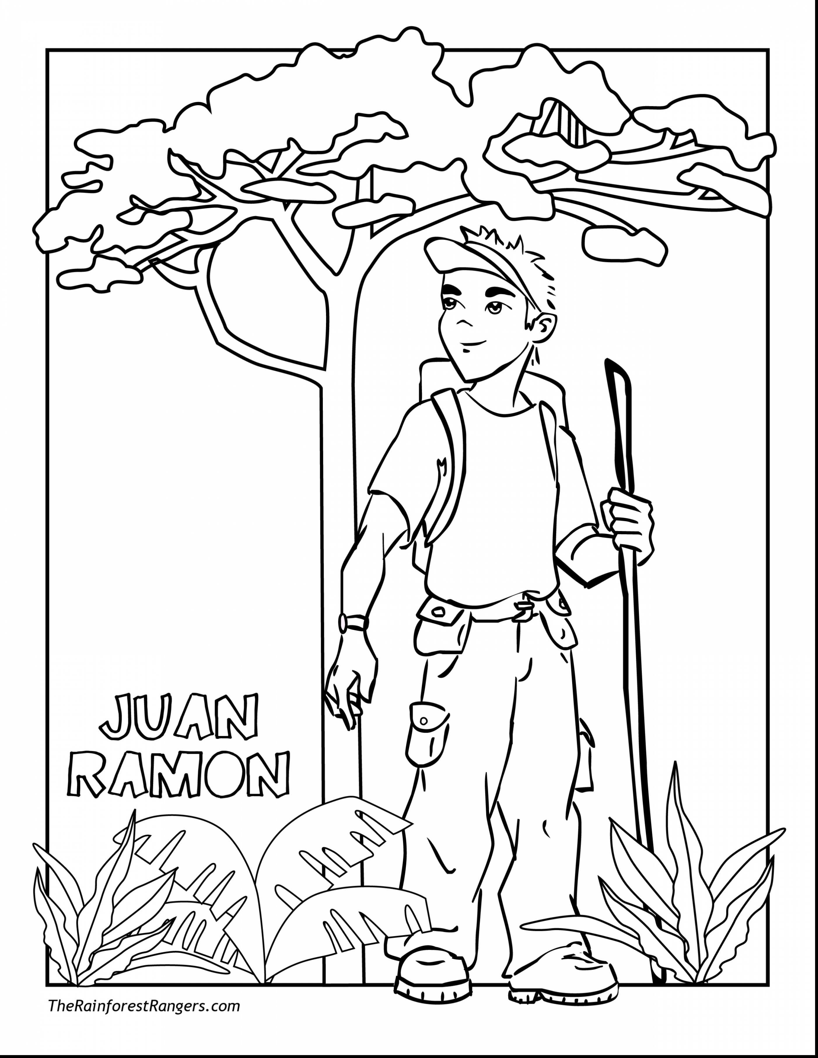 2805x3630 Best Of New Rainforest Coloring Pages To Print
