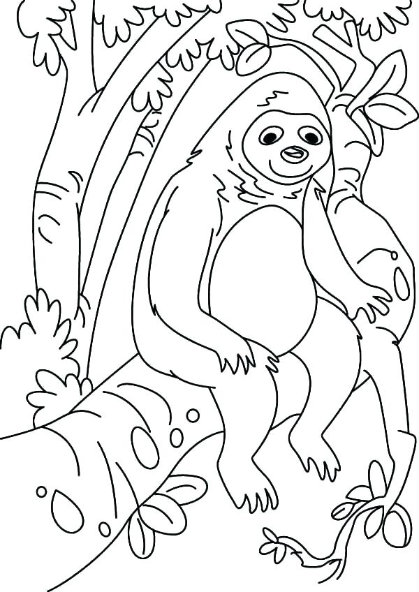 600x848 Lazy Town Coloring Pages Sloth Coloring Pages Perfect Sloth