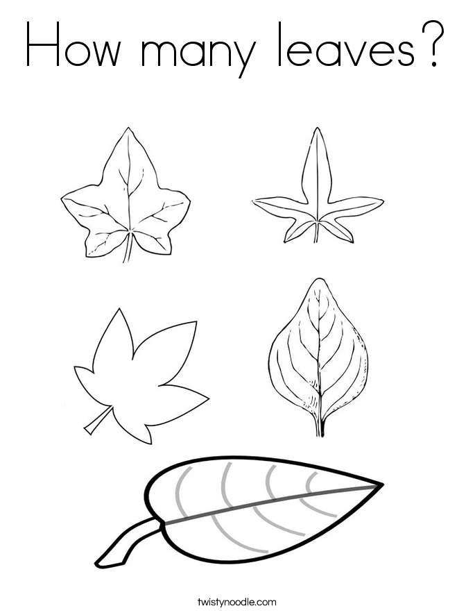 685x886 Leaf Coloring Pages