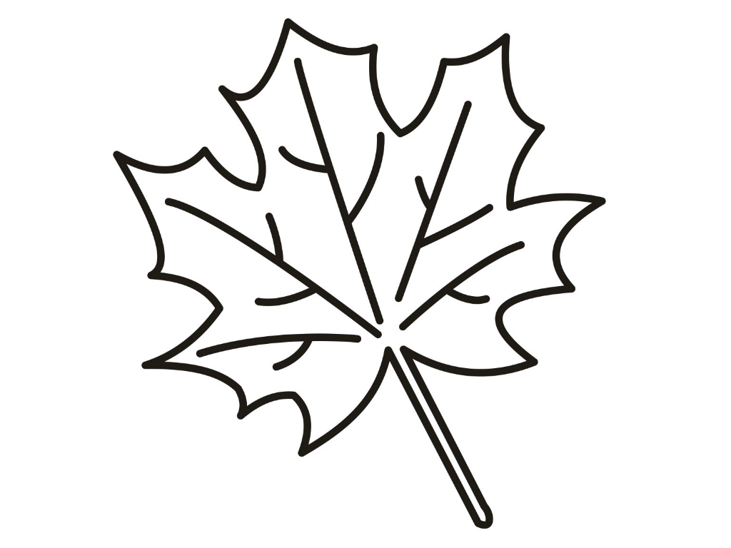 1024x768 Maple Leaf Coloring Page