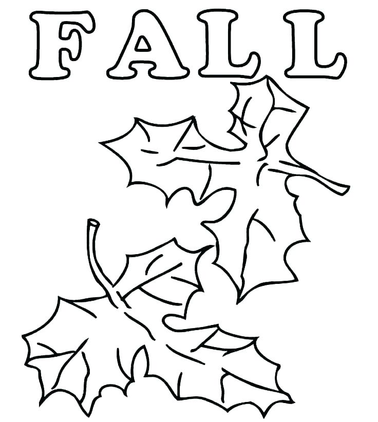 736x822 Printable Fall Coloring Pages Printable Leaves Coloring Pages