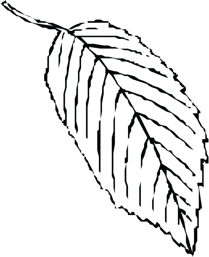 728x894 Coloring Page Leaf Leaf Coloring Page Thanksgiving Leaves Coloring