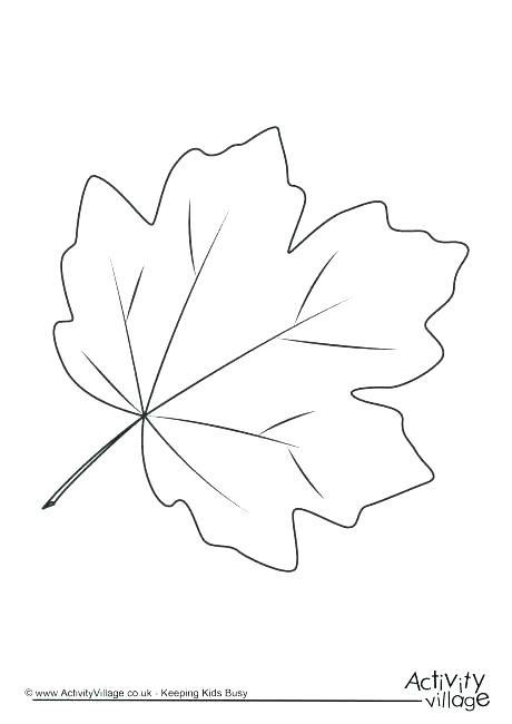 460x650 Leaf Color Pages Fall Leaves Coloring Pages For Preschoolers Leaf