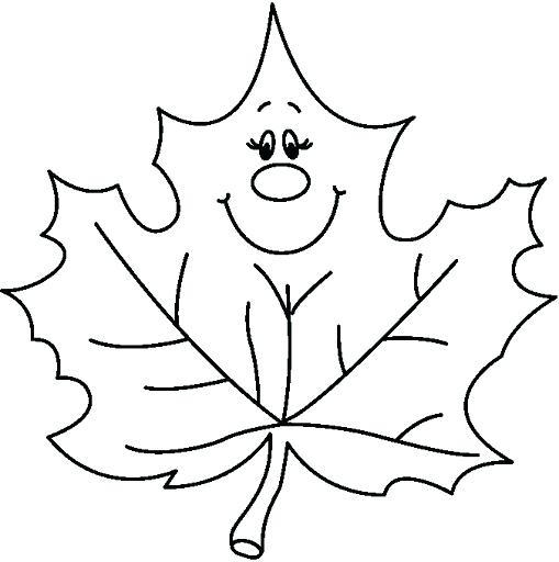 509x512 Leaf Color Pages This Page Has Lots Of Leaves To Color Free