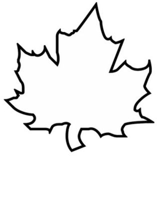 315x420 Leaf Coloring Pages Coloring Pages To Print