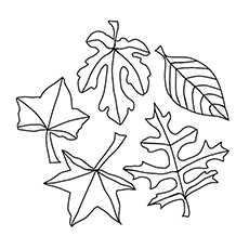 230x230 Top Free Printable Leaf Coloring Pages Online