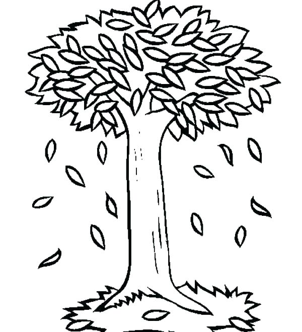 600x660 Leaf Coloring Page