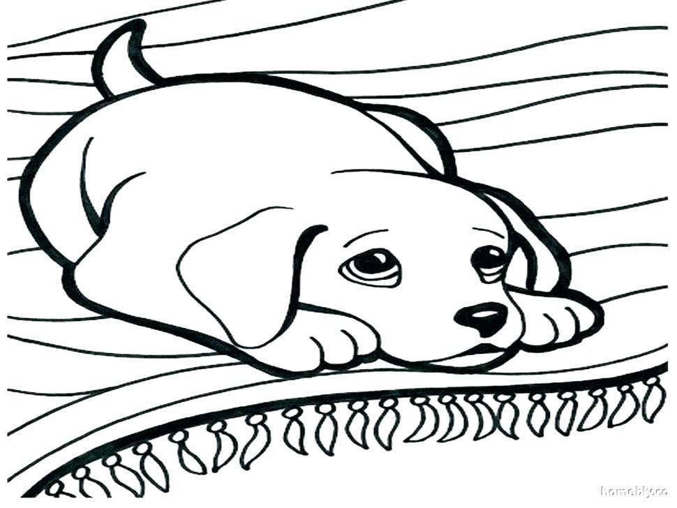 970x728 Leafeon Coloring Pages Corgi Coloring Pages Dog Corgi Dog Coloring