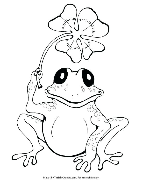 588x762 Frog Coloring Pages Free Leapfrog Baby Animal Coloring Pages