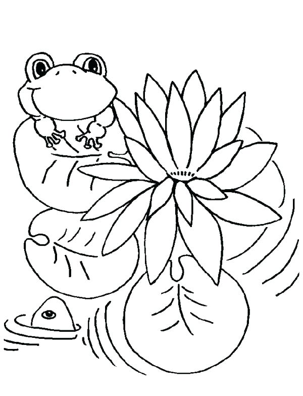 600x783 Frog Color Pages Leap Frog Color Pages Lily Pad And Coloring Page