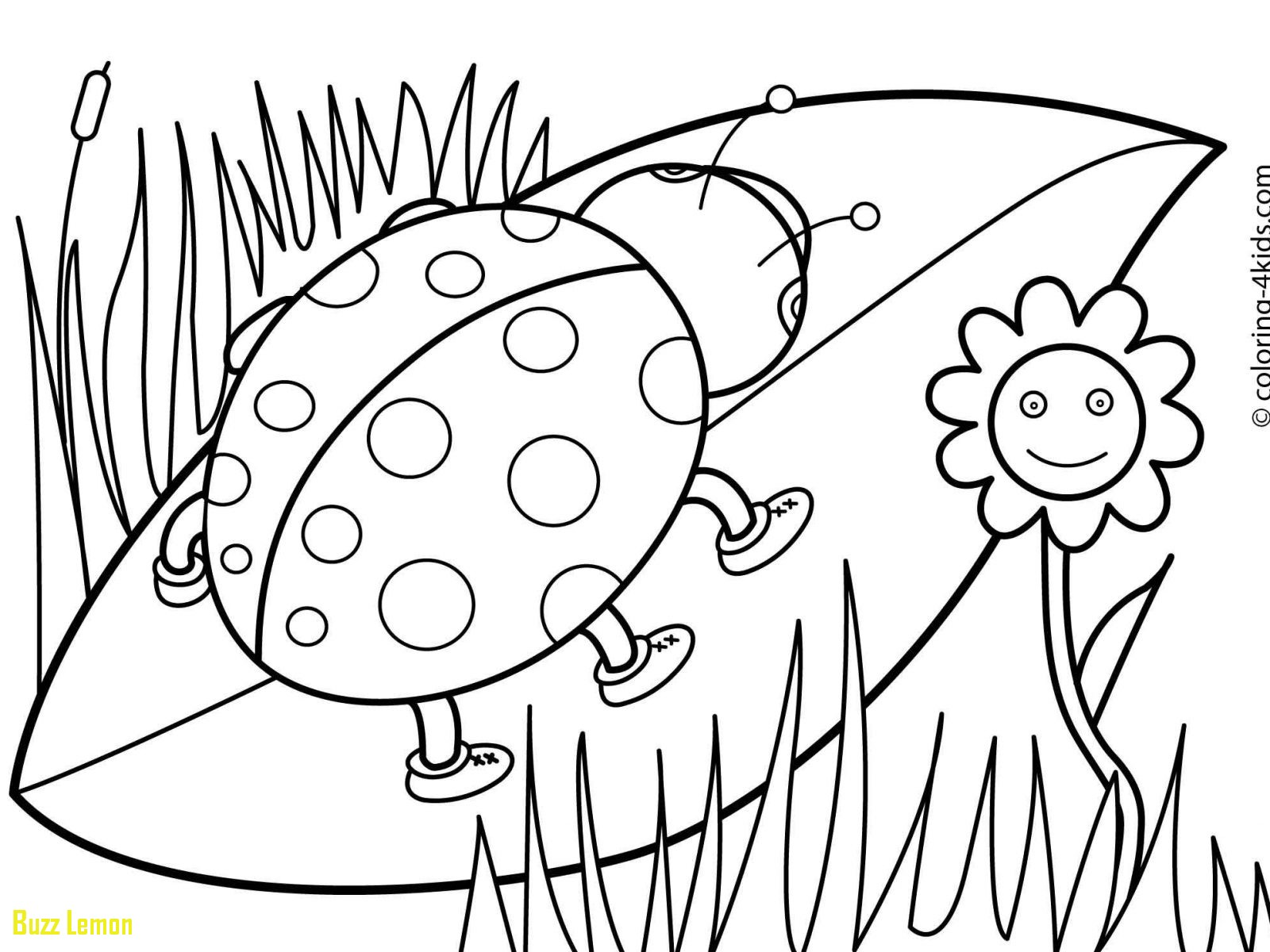 1600x1200 Beautiful Free Preschool Coloring Pages Buzz Coloring