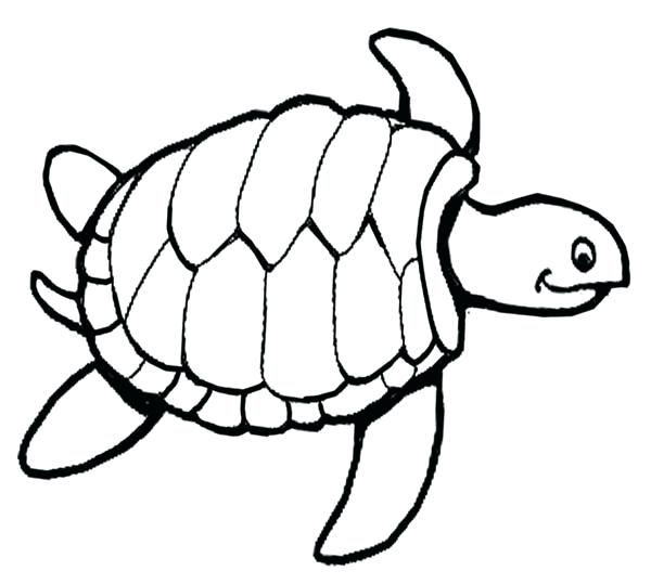 600x539 Sea Turtle Coloring Page Plus Sea Turtle Sea Turtle Documentary