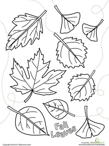 360x480 Fall Leaves Coloring Pages Printable