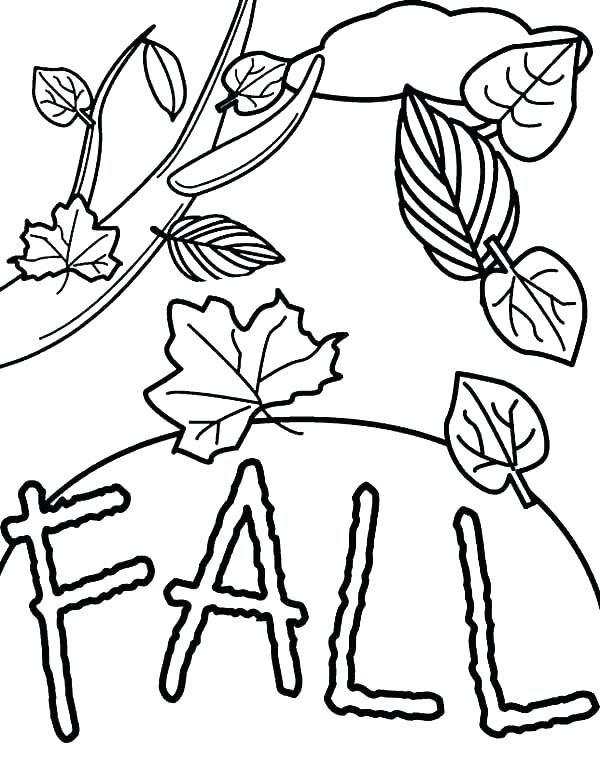 600x760 Autumn Leaf Coloring Pages Leaf Coloring Page Coloring Picture