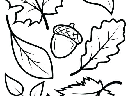 440x330 Free Printable Autumn Leaves Coloring Pages Leaves Coloring Pages