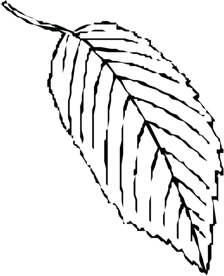 728x894 Coloring Pages Autumn Leaf Coloring Pages For Preschool Fall Tree